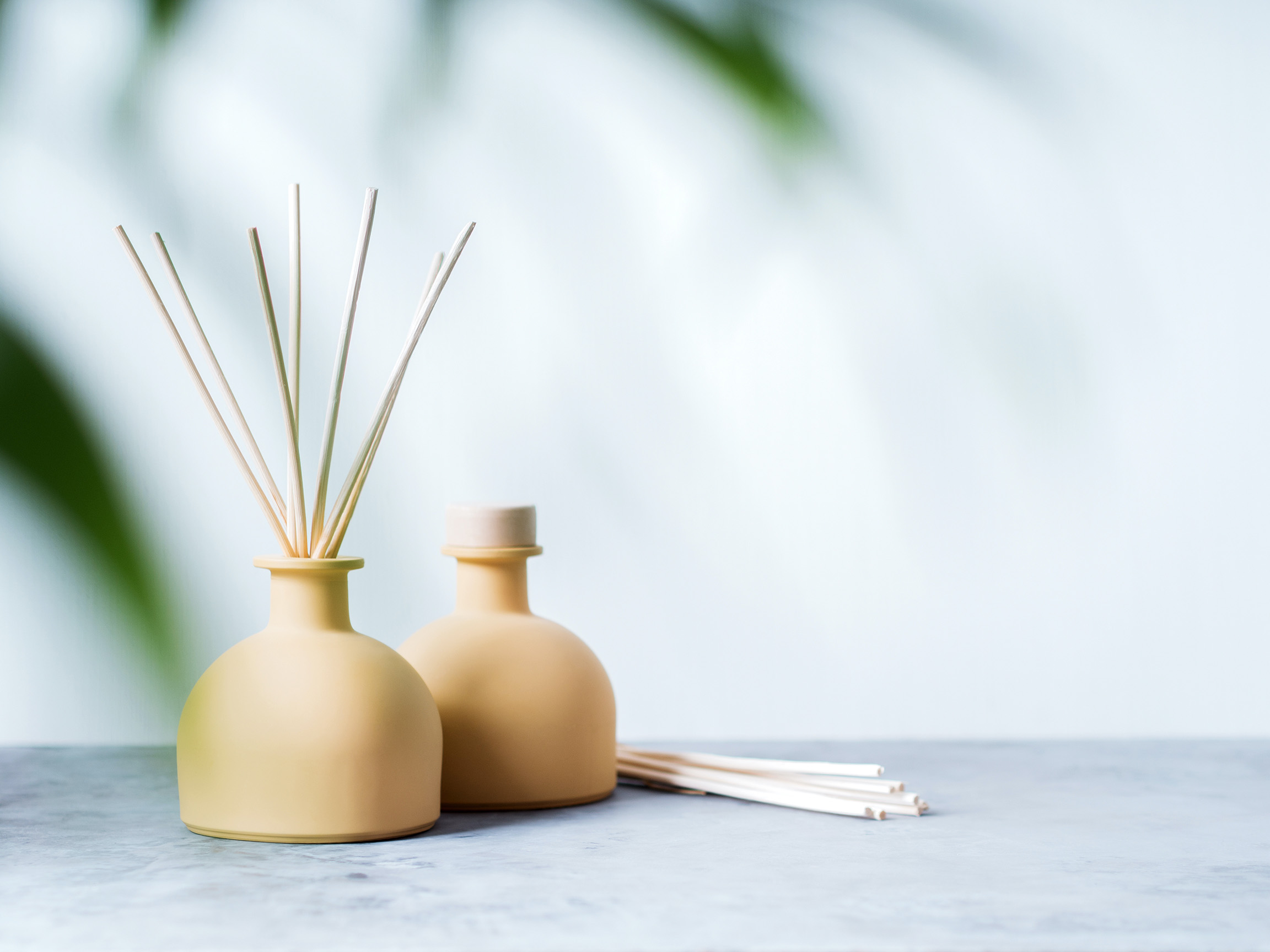 Parfums plus - aroma reed diffuser home fragrance with rattan sticks on a light